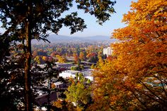 Fall in Eugene, Oregon