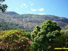Floresta da Tijuca Rio RJ http://www.skyscrapercity.com/showthread.php?t=1316907
