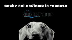 Info:0924/46334 booking@grandhotelselinunte.it