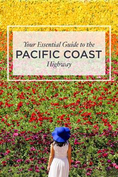 Your Essential Guide to the California Pacific Coast Highway - Places You Must Visit along Hwy 1 - A San Francisco to San Diego Road Trip and Beyond // Local Adventurer Travel Vacation List Holiday Tour Trip Destinations Pacific Coast Highway, Highway Road, California Dreamin', California Flowers, California Vacation, Northern California, Road Trip Hacks, Iceland Travel, Road Trip Usa
