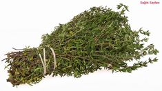Studies have found that the super herb thyme essential oil potently kills lung and breast cancer cells. The essential oil of common thyme (Thymus vulgaris) which usually known as of contains thymol. Thymol belongs to a naturally Cha Natural, Natural Cures, Natural Healing, Health Benefits Of Thyme, Thyme Herb, Thyme Plant, Fresh Thyme, Medicinal Plants, Herbs