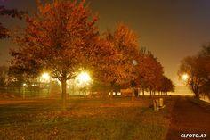 Linz-Urfahr bei Nacht in einer kalten November-Nacht #nachtfotografie #langzeitbelichtung November, Country Roads, Celestial, Sunset, Outdoor, Long Exposure, Travel Photography, Scenery Photography, Linz