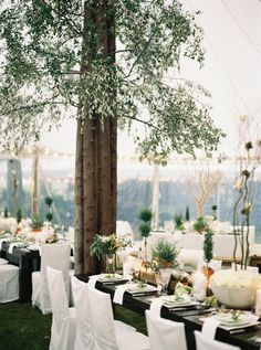 This couple transformed their tent into a stunning enchanted forest for their black tie wedding in Michigan.