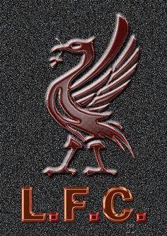 Liverpool YWNA