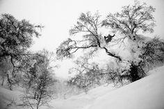 Photo Gallery: Eric Pollard, Pep Fujas, Chris Benchetler and Andy Mahre in Hokkaido, Japan - Freeskier Magazine