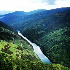 Uno de los miradores del cañón del Sil en la #RibeiraSacra Photo by guedelosada