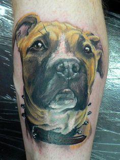 Dog portrait tattoo by Red Dog Tattoo Trendy Tattoos, Love Tattoos, Small Tattoos, Tatoos, Amazing Tattoos, Dog Portrait Tattoo, Tattoo Art, Realism Tattoo, Frog Tattoos