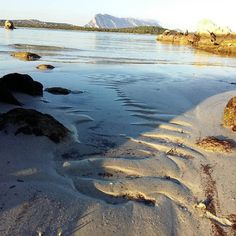 by http://ift.tt/1OJSkeg - Sardegna turismo by italylandscape.com #traveloffers #holiday | Puntaldia  27/01/2016 #sardegna #mare #loves_sardegna #sardegnamare #gopro #instasardegna #rivogliolestate #passione #passion #sardegnacountry #lanuovasardegna #igersardegna #sardiniaexperience #puntaldia #igersitalia Foto presente anche su http://ift.tt/1tOf9XD | January 28 2016 at 11:18PM (ph lore_d_ ) | #traveloffers #holiday | INSERISCI ANCHE TU offerte di turismo in Sardegna http://ift.tt/23nmf3B…
