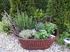 Autor: Janka.A. Wicker Baskets, Kos, Plants, Plant, Aries, Planets, Blackbird, Woven Baskets