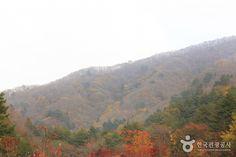 Gyebangsan Mountain - Pyeongchang