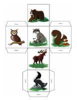 Graph des animaux de la forêt