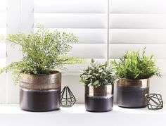 METALLIC+PLANTERS++-+BRONZE/+COPPER