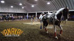 Caballo Bailando con Rienda Abajo - Feria Regional del Caballo 2017