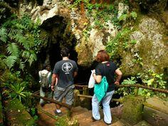 Caverna do Diabo - Parque Estadual de Jacupiranga - Sao Paulo - Pesquisa Google