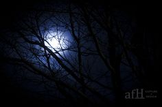 Super Moon Photography : How to shoot and photograph the moon !!