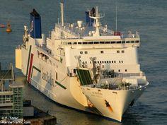 NEW CAMELLIA (MMSI: 431602232) Schiffsfotos | AIS Marine Traffic