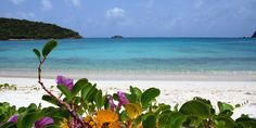 What to do in St. Croix, U.S. Virgin Islands. We're revealing the best things to do, where to eat, and sharing exclusive insider tips!