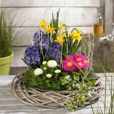 Pflanzideen: Frühlingsblüher: grün erleben Bouquets are classified as the most important things that accompany us Easter Flower Arrangements, Easter Flowers, Beautiful Flower Arrangements, Spring Flowers, Floral Arrangements, Beautiful Flowers, Deco Floral, Arte Floral, Flower Planters
