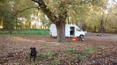 "Free, quiet, secluded Iowa camping area with a scenic view of Mississippi⠀  Learn about this campsite at: https://freecampsites.net/ferry-landing/⠀  ""Pretty, muddy, secluded. I'm a traveling comic book writer. I stayed here in November 2016. It was a nice spot right by the river."" - @cyberpunkdan"