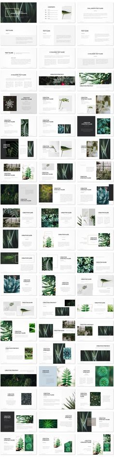 Botanical Presentation Template has botanical images of plants and flowers against a green background, suitable for a nature or gardening slide show.