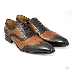 Global Wealth Trade Corporation - FERI Designer Lines Black Shoes, Men's Shoes, Dress Shoes, Mens Silver Earrings, Cowhide Leather, Italian Leather, Sexy Men, Oxford Shoes, Fashion Accessories