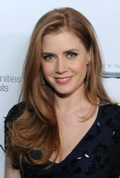 Amy Adams Silky Long Hairstyle