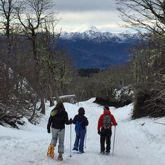 A Reserva Biológica Huilo Huilo, na Patagônia Chilena, abriu no último dia 04/07 o Bosque Nevado. Um centro de atividades na neve pra a família toda! Vale a pena conferir: www.huilohuilo.com