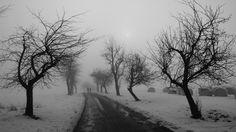 winter road black and white-Winter snow scenes wallpaper ...