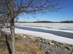 Joki meressä :) #jäätlähdössä #kevät Joki, Beach, Water, Outdoor, Gripe Water, Outdoors, The Beach, Beaches, Outdoor Games