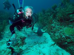 Photo - Google Photos Belize Diving, Photo And Video, Google, Photos, Pictures