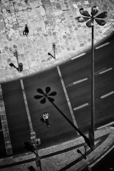 A FLOWER BETWEEN US by Mr Friks on 500px Black White Photos, Black And White, City Streets, Street Photography, To Go, Flowers, Red, Pictures, Inspiration