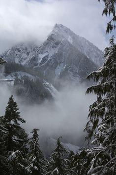 Montagne enneigée <3 ****