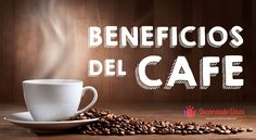 Propiedades y beneficios del cafe Weight Loss, Coffee, Tableware, Amor, Frases, Benefits Of Coffee, Kitchen Herbs, Coffee Beans, Coffee Lovers