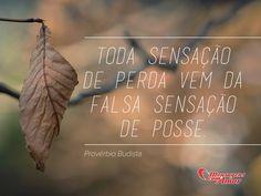 Toda sensação de perda vem da falsa sensação de posse. (Provérbio Budista)  #Poder #Budista #Reflexao