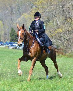 Oatlands Races - Photos by Nancy Kleck ---   Oatlands, Leesburg VA ~Photos by Nancy Kleck ~ http://mbecc.com/nkleck  [... -