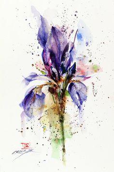IRIS Floral Watercolor Print by Dean Crouser by DeanCrouserArt