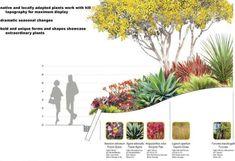 garden planting.jpg (640×438)