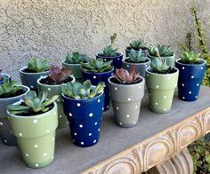 Painted Plant Pots, Painted Flower Pots, Painted Pebbles, Hand Painted, Flower Pot Crafts, Clay Pot Crafts, Succulent Favors, Succulent Pots, Small Flower Pots