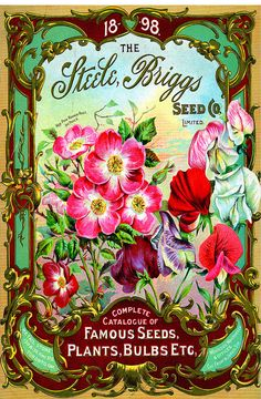 "$2.99 - Waterslide Decals (4Pcs 2.5""X3.5""Each) Roamer Roses Flonz 0658 Vintage Flowers #ebay #Home & Garden Vintage Diy, Images Vintage, Vintage Labels, Vintage Ephemera, Vintage Pictures, Vintage Cards, Vintage Postcards, Posters Vintage, Vintage Prints"
