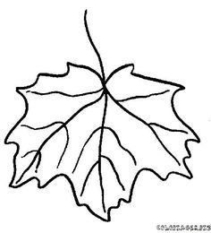 coloring page Leaves on Kids-n-Fun. Coloring pages of Leaves on Kids-n-Fun. More than coloring pages. At Kids-n-Fun you will always find the nicest coloring pages first! Leaf Coloring Page, Coloring Pages For Kids, Dame Nature, Tree Leaves, Digital Stamps, Printable Coloring Pages, Stencils, Crafts For Kids, Diy Projects