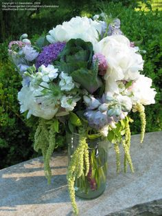 cut flower bouquets using blue salvia | Cut Flowers and Floral Design: Gwendalou picture (The Flowerpot Cafe')