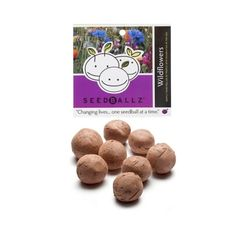 Seedballz Wildflower - 8 Pack - Domestic Good