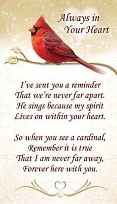 Sympathy Quotes, Poem Quotes, Faith Quotes, Wisdom Quotes, Great Quotes, Life Quotes, Inspirational Quotes, Mom In Heaven Quotes, Heaven Poems