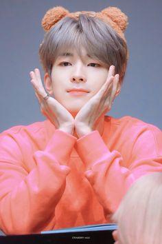 Woozi, Jeonghan, Kdrama, Won Woo, Boy Idols, Adore U, Seventeen Wonwoo, Pledis 17, Team Leader