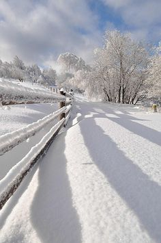 We Love Christmas Time Photography Winter Snow 58 - sitihome Time Photography, Winter Photography, Nature Photography, Winter Love, Winter White, Winter Magic, Winter Scenery, Snow Scenes, Winter Beauty