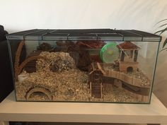 Hamster Life, Hamster Habitat, Baby Hamster, Hamster House, Dwarf Hamster Cages, Cool Hamster Cages, Mouse Cage, Small Animal Cage, Cute Hamsters