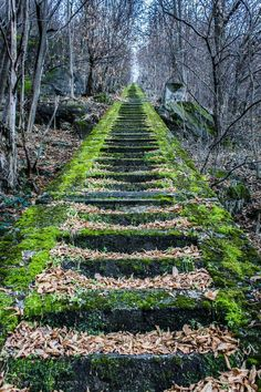 Beautiful steps in Chiavenna, Italy.