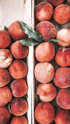 Pfirsiche, bunt, Obst, - Iphone hintergrundbild - - Health and wellness: What comes naturally Peach Aesthetic, Summer Aesthetic, Aesthetic Food, Aesthetic Makeup, Aesthetic Vintage, Les Croquettes, Colorful Fruit, Tropical Fruits, Belle Photo