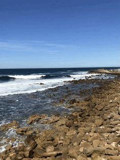 Sandy Cheeks, Beach, Water, Outdoor, Beautiful, Gripe Water, Outdoors, The Beach, Outdoor Games