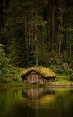 .Tiny house (Moss-covered cabin) at the edge of a lake.